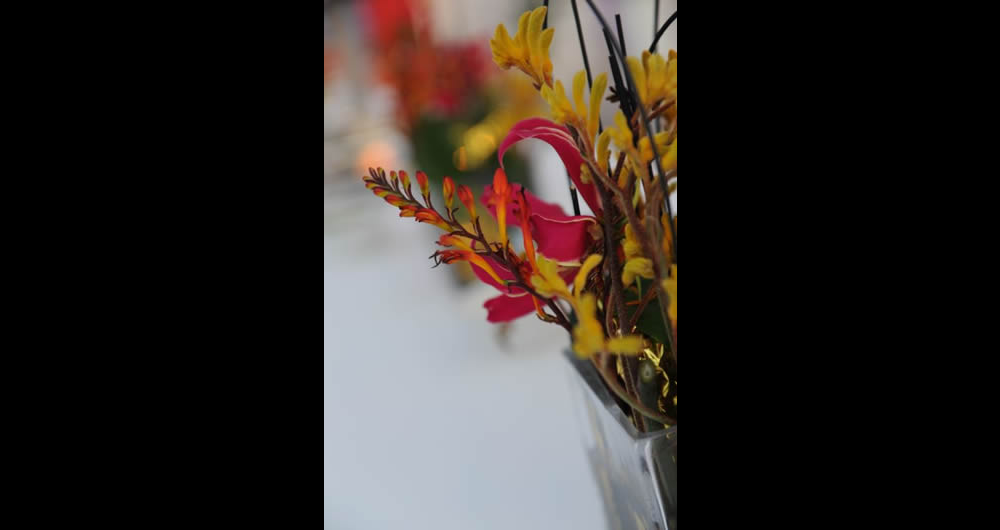 Detail_blumen_event_